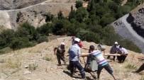 Yol Olmayınca 515 Kiloluk Trafoyu El Birliği İle Tepeye Taşıdılar
