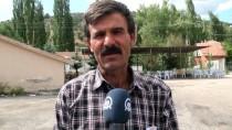 ÇAVUNDUR - Aydos Dağı'nda Beslenen Kurbanlıklar Günler Öncesinden Satıldı