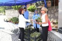 AVCILAR BELEDİYESİ - Mezarlıklarda Çiçekli Karşılama