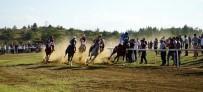 AT YARIŞLARI - Taşköprü'de Düzenlenen At Yarışları Nefesleri Kesti