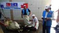 DENİZ FENERİ - Balkanlara Kardeş Eli