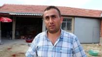 Burdur'da Tüberküloz Çıkan 3 Kurbanlığın Eti İmha Edildi