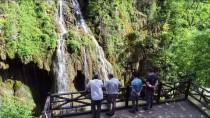 Doğaseverlerin Uğrak Noktası Açıklaması Kuzalan Tabiat Parkı