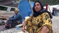 FINDIK HASADI - Fındık İşçilerinin Çadırda Bayramı