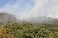Kastamonu'da Çıkan Orman Yangını Helikopter İle Söndürüldü