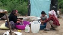 ÜNİVERSİTE MEZUNU - Mevsimlik Tarım İşçileri Bayramı Tarlada Geçiriyor