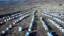 ŞENYAYLA - Muş Balında Rekolte Beklentisi 3 Bin 600 Ton