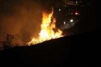 Trabzon'da Örtü Yangını Açıklaması 4 Saatte Söndürüldü