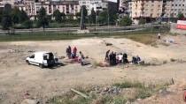 SULTANGAZİ BELEDİYESİ - Zabıtadan 'Kaçak Kesim'e Para Cezası