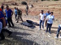 Bingöl'deki Feci Kazada Ölü Sayısı 6'Ya Yükseldi