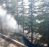 Sungurlu'da Korkutan Yangın