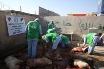Suriye'de Kesilen 5 Bin 357 Hisse Kurban İhtiyaç Sahiplerine Dağıtılıyor