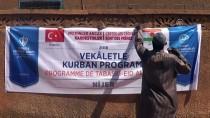 KURBAN KESİMİ - TDV'den 2 Milyon Nijerli'ye Kurban Yardımı