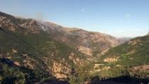 Tunceli'de Ormanlık Alanda Yangın