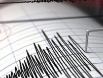 Venezuela depremle sarsıldı