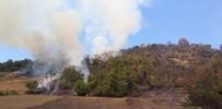 Bartın'da Ormanlık Alanda Çıkan Yangın Söndürüldü