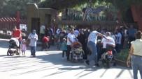 GAZİANTEP HAYVANAT BAHÇESİ - Bayram Tatilinde Gaziantep Hayvanat Bahçesi'ne Yoğun İlgi