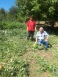 Ekolojik Pazar Projesiyle Organik Tarım Değer Kazanıyor