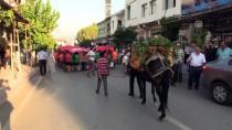 HÜSEYİN YAYMAN - Hassa 2. Üzüm Festivali