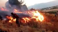 SELIMIYE - Kahramanmaraş'ta Orman Yangını