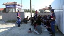 Çanakkale'de 56 Düzensiz Göçmen Yakalandı