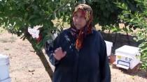 Manyas'ta Zamansız Yağış Bal Verimini Düşürdü