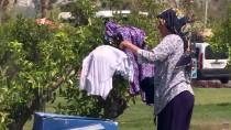 YERLİ TURİST - 'Turizmin Başkenti'nde Bayram Tatili Yoğunluğu