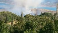 ANIZ YANGINI - Anız Yangınında Ağaçlar Zarar Gördü
