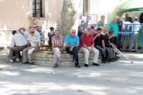 MEFTUN - Elazığ'da Termometreler 44 Dereceyi Gösterdi