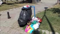 MIMARSINAN - Silivri'de Piknikçiler Çöp Birikmesine Neden Oldu
