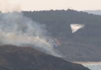 ÇAVUŞBAŞı - Beykoz'da Askeriye Ait Alanda Orman Yangını Çıktı