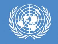 MYANMAR - BM'den Arakanlı Müslümanlarla ilgili tarihi karar