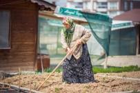ŞEHİT YAKINI - Hobi Bahçesi Sakinleri Üretmenin Hazzını Yaşıyor