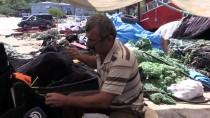 Karadenizli Balıkçılarda Yeni Av Sezonu Heyecanı