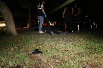 Kayıp Genç Park İçerisinde Ölü Bulundu