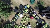 İLAÇ KALINTISI - Türkiye'nin 'Armut Bahçesi' Açıklaması Gürsu