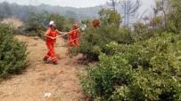 Bingöl'de Ormanlık Alanda Yangın