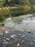 PİKNİK ALANI - Piknik sonrası geriye çöpler kalıyor
