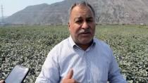 ÇEVRE İL MÜDÜRLÜĞÜ - Söke'de Üreticiler Fabrika Tozlarından Şikayetçi