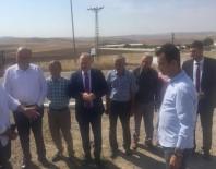 TÜLAY BAYDAR - CHP'li Gök Şarbon Vakasının Yaşandığı Bölgede