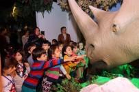 VAHŞİ YAŞAM - Evrensel Değerler Çocuk Müzesi 23 Bin 494 Çocuk Ağırladı