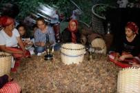 NURETTİN CANİKLİ - Fındığın Başkentinde Fındık Festivali