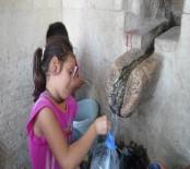 AFRİN - Kilis'te Baraj Kurudu, Su Sıkıntısı Başladı