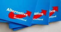 SOSYAL DEMOKRAT PARTİ - Almanya'da Irkçı Parti Afd Rekor Kırdı