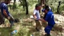 Bolu'da Kaçak Kazı Operasyonu