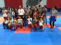 KUNG FU - Dilovası Belediye Spor Okulları Başarıya Doymuyor