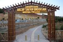 Tunceli'de Cumhurbaşkanı Erdoğan Hatıra Ormanı Yenilendi