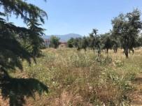 SERVERGAZI - Yeşil Alana Akaryakıt İstasyonu Yapım Kararına Mahkeme 'Dur' Dedi