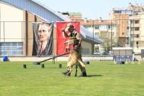 HASAN ALI KARASAR - JAKEM Komutanlığına Bağlı Köpeklerin Gösterileri Nefesleri Kesti