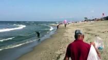 MEHMET İSPIROĞLU - Karasu'da Denize Girişlere İzin Verilmiyor